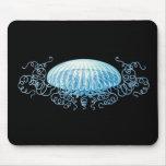 Haeckel Jellyfish