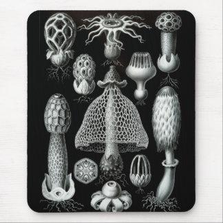 Haeckel Negative Mouse Pad