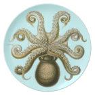 Haeckel Octopus Plate