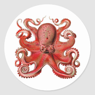 Haeckel Octopus Red Classic Round Sticker