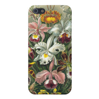 Haeckel Orchidaceae Orchids Case For The iPhone 5
