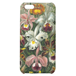 Haeckel Orchidaceae Orchids Cover For iPhone 5C