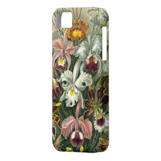Haeckel Orchids Barely There iPhone 5 Case