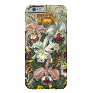 Haeckel Orchids Barely There iPhone 6 case