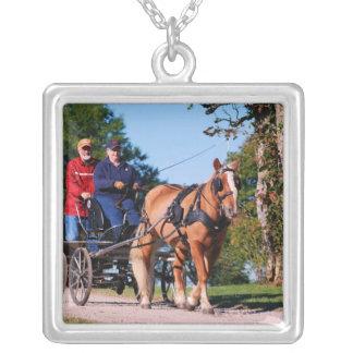 Haflinger at national drive square pendant necklace