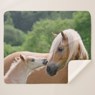 Haflinger Cute Horses Foal and Mom Cuddling Kiss . Sherpa Blanket