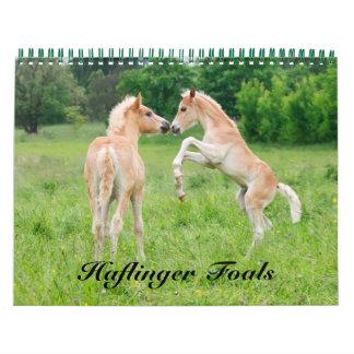 Haflinger Foals 2017  size medium Calendar