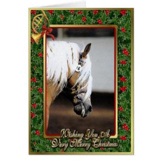 Haflinger Horse Blank Christmas Card