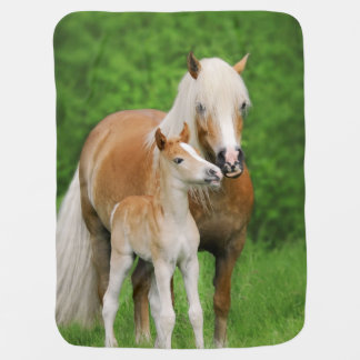 Haflinger Horse Cute Baby Foal Kiss Mum Pony Photo Baby Blanket