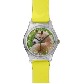 Haflinger Horse Cute Foal - girly dial-plate Watch