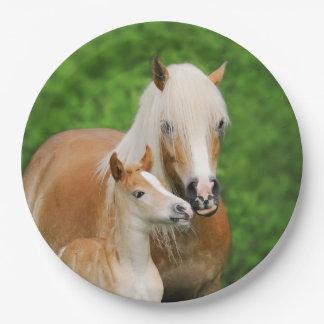 Haflinger Horses Cute Foal Kiss Mum - Happy Party 9 Inch Paper Plate