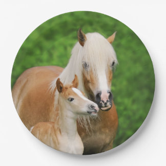 Haflinger Horses Cute Foal Kiss Mum - Happy Party Paper Plate