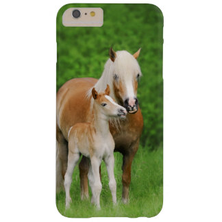 Haflinger Horses Cute Foal Kiss Mum - Phonecase Barely There iPhone 6 Plus Case