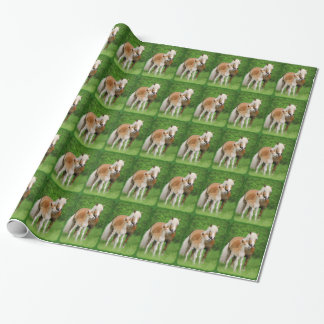 Haflinger Horses Cute Foal Kiss Mum Photo - Gift Wrapping Paper