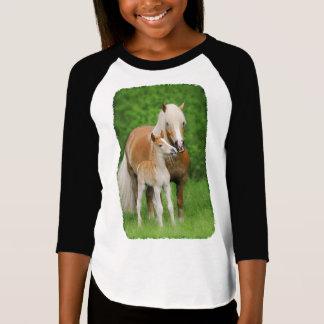 Haflinger Horses Cute Foal Kiss Mum Photo - Raglan T-Shirt