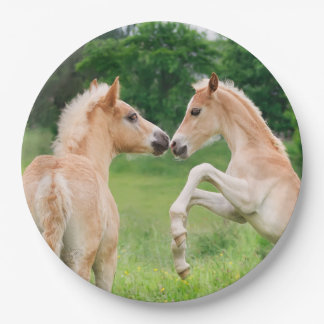 Haflinger Horses Cute Foals Rearing, Happy Party 9 Inch Paper Plate
