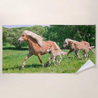 Haflinger Horses with Cute Foals Run Funny Photo _ Beach Towel