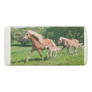 Haflinger Horses with Cute Foals Run Funny Photo Eraser