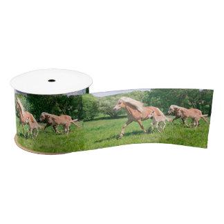 Haflinger Horses with Cute Foals Run Funny Photo , Satin Ribbon