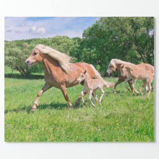 Haflinger Horses with Cute Foals Run Funny Photo * Wrapping Paper