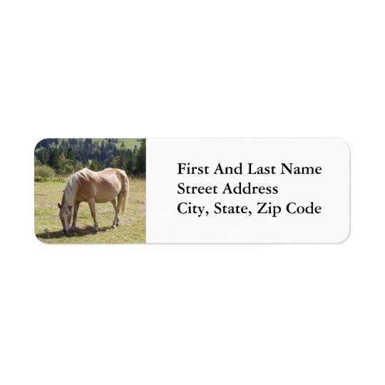 Haflinger Palomino Pony in Green Pasture Photo Return Address Label