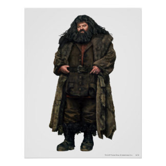 Hagrid Poster