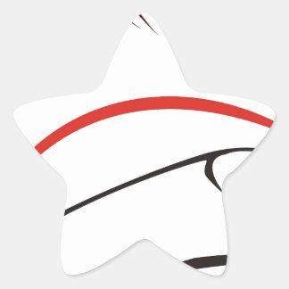 haida hog star sticker
