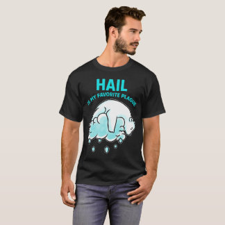 Hail Is Favorite Plague Passover Tee