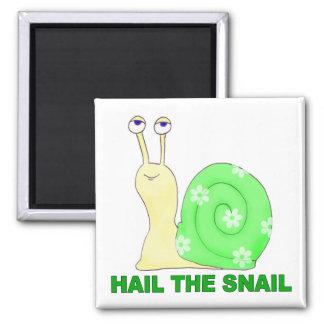 Hail the snail magnet