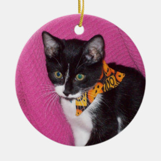 Haileys Cats Ceramic Ornament
