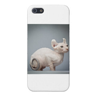 HAIRLESS CAT COVER FOR iPhone 5/5S
