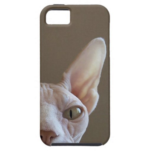 Hairless Sphynx Cat iPhone Case iPhone 5 Covers