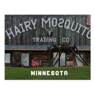 Hairy Mosquito Postcard