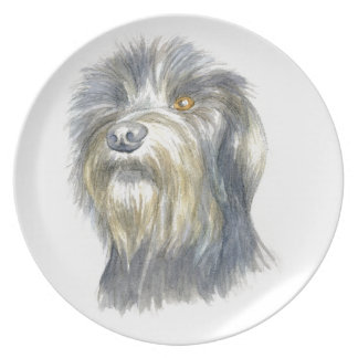 Hairy terrier plate