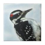 Hairy Woodpecker Ceramic Tile