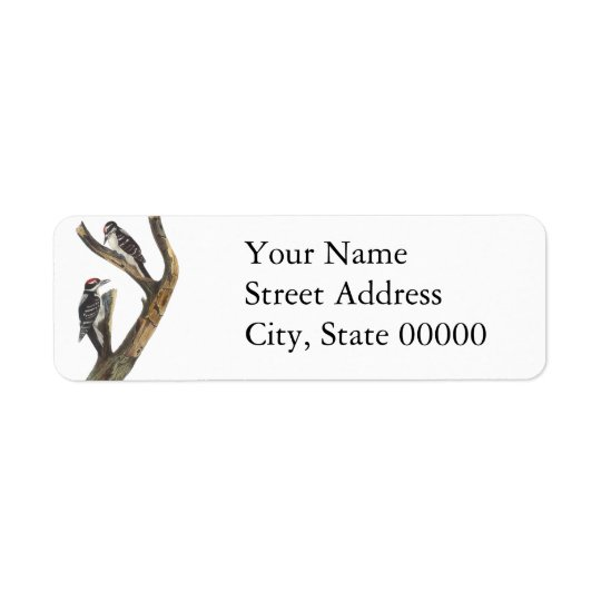 Hairy Woodpecker, John Audubon Return Address Label