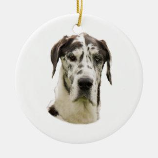 Halequin Great Dane portrait photo Ceramic Ornament