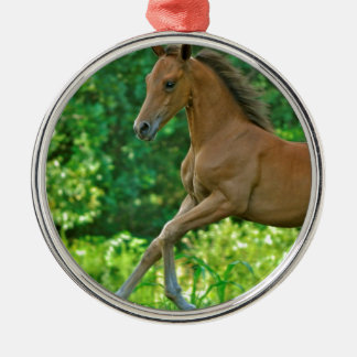Half Arabian Colt Silver-Colored Round Ornament