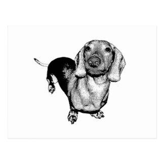 Halftone Black and White Photo Dachsund Doxie Postcard