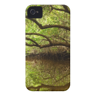 Halfway Creek at Low Tide iPhone 4 Case-Mate Cases