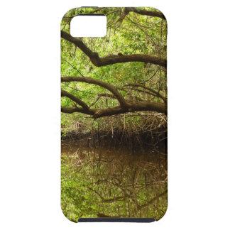 Halfway Creek at Low Tide iPhone 5 Cases