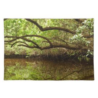 Halfway Creek at Low Tide Placemat