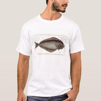 Halibut (Pleuronectes Hippoglossus) plate XLVII fr T-Shirt