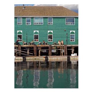 Halifax seawall postcard