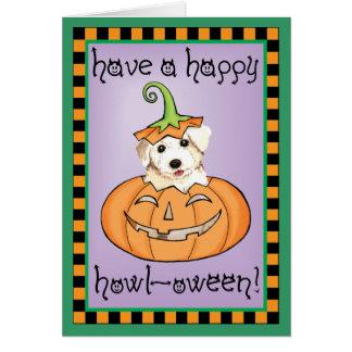 Halloween Bichon Card