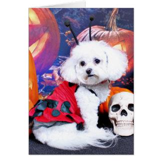 Halloween - Bichon Frise - Mia Card