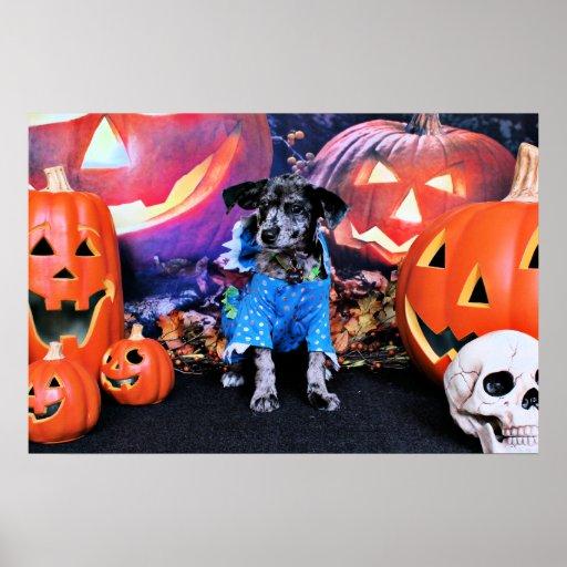 Halloween - Blue Heeler - B'Elanna Print
