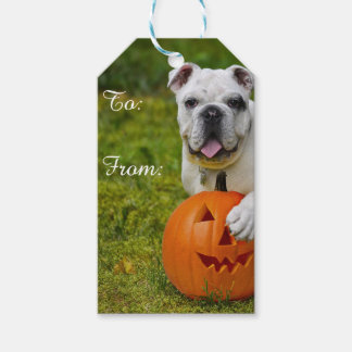 Halloween bulldog pack of gift tags