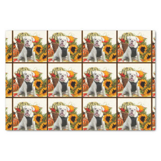Halloween Bulldog tissue paper