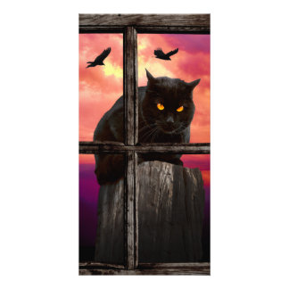 Halloween Cat Personalized Photo Card